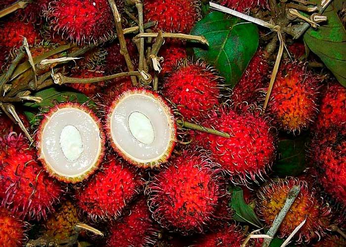 Корзина с рамбутанами, фрукты Занзибара