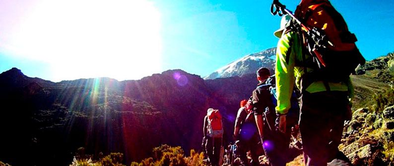 Восхождение на Килиманджаро - все самое нужное в одной статье