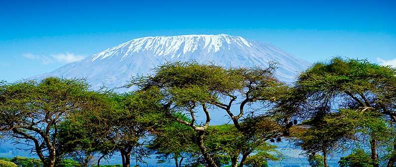Снега Килиманджаро, Хемингуэй-легендарные фильм и рассказ