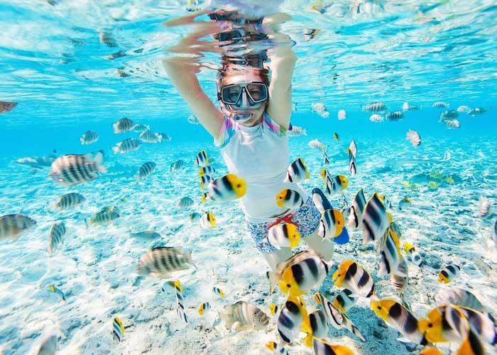 Подводный мир Занзибара
