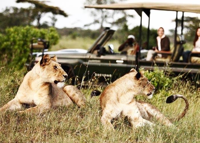 Какие туры лучше в Танзанию: индивидуальные или групповые? - фото