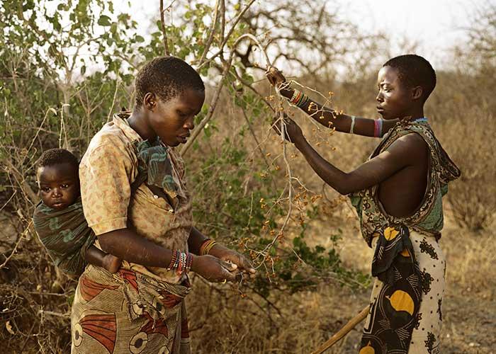 Самое древнее племя в Африке племя Хадзабе - фото